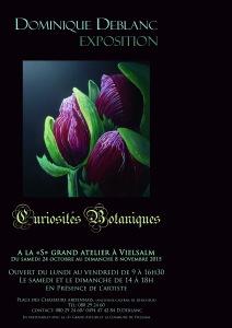 curiosités_botaniques_affiche