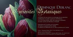curiosités_botaniques_invitation